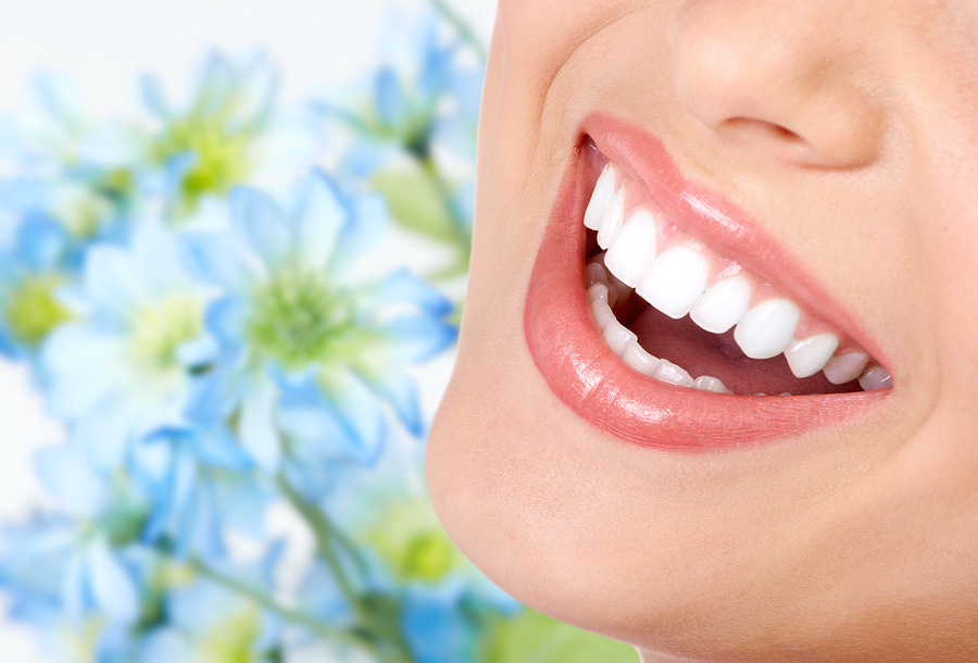 South Lyon Michigan Dentist - Probiotics and Oral Health